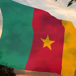 Hommage_Armees_Cameroun1501
