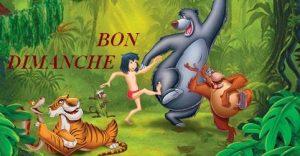 le-livre-de-la-jungle-disney-culteBIS