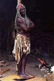 tribus kiwais