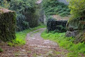 chemin-de-torfou-a-la-pierre-tounisse