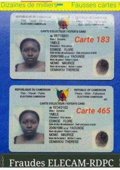"""Résultat de recherche d'images pour """"image de Carte d'électeur camerounaise"""""""