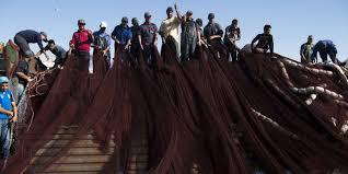 Le Parlement européen inclut le Sahara occidental dans son accord  commercial avec le Maroc